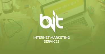BitVisuals Web Design and Internet Marketing Services